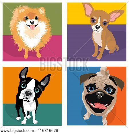 Cartoon Caricatures Of 4 Dog Breeds. Pomeranian, Chihuahua, Boston Terrier, Pug. For Posters, Cards,