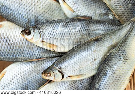 Dry Roach Fish, Top View, Lots Of Pieces, Fish Background