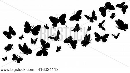 Flying Butterflies Silhouettes. Butterflies In Flight. Butterfly Seamless Border. Black Forest And G