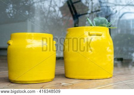 Looking In A Showcase With 2 Large, Yellow Clay Pots. With A Lost Little Houseplant.