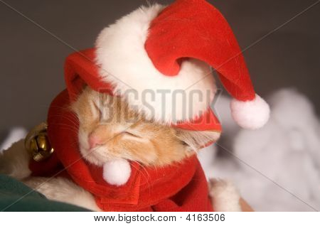 A sleepy kitten begins to dose off while wearing a santa costume and hat with fake snow and a black background poster