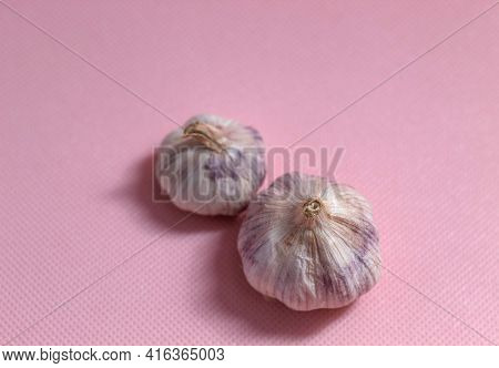The Photo Shows Purple Garlic. Garlic Lies On A Pink Background. Just Two Heads Of Whole Garlic With