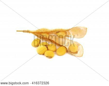 Soybean Pod And Seeds Isolated On White, Glycine Max