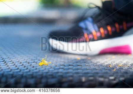 Macro Shot Showing Small Fallen Flower On A Wickerware Mat With A Colorful Sneaker Shoe Of A Strong