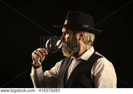 Elite Drink. Checking Color And Sediments Of Wine. Wine Tasting. Male Skilled Sommelier Estimates Al