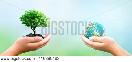Hands Holding Tree And Earth Globe Over Green And City Background