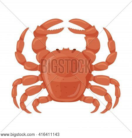 Fresh Crab With Claws. Marine And River Crustacean Animals. Food Ingredient, Delicacy. Flat Cartoon