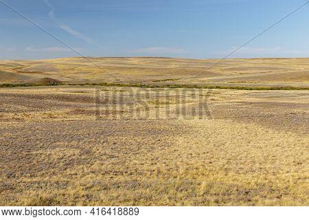 Steppe In Kazakhstan. Dry Grass In The Empty Steppe. Kazakhstan Landscape.