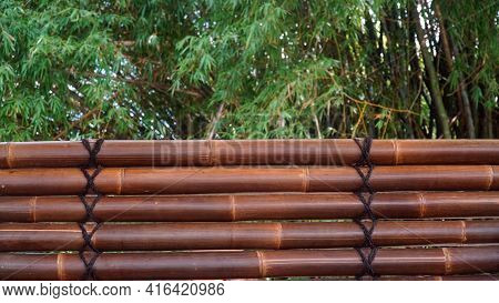 Five Dark Brown Bamboos With Black Ropes, Blurred Background Of Bamboo Tree Leaves. Can Be A Design