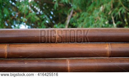 Three Bamboos In Dark Brown Color With Blurred Bamboo Leaf Background. Can Be A Design Background Ma