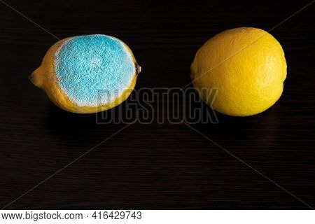 Two Whole Yellow Bright Lemons On A Dark Wooden Table. One Lemon With Light Turquoise Textured Mold,