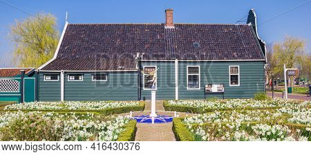 Zaanse Schans, Netherlands - March 31, 2021: White Narcissus Flowers In Front Of The Museum In Zaans