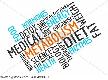 Words Cloud Of Metabolism. Concept Of Human Health