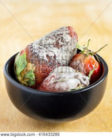 A Bowl Of Rotten Strawberries Covered In Fluffy Mold On A Wooden Background