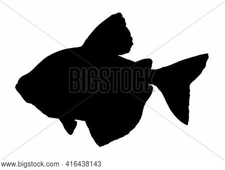Cute Tropical Fish - A Picture For Coloring. Vector Linear Fish - Animal Design Element. Aquarium Fi