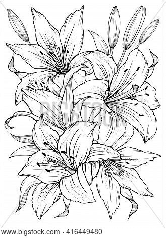 Coloring Page With Lilies And Leaves. Vector Page For Coloring. Flower Colouring Page. Outline Lilie