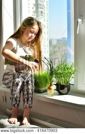 Girl Watering The Plants On The Windowsill.self Isolation And Quarantine Hobby During The Pandemic O