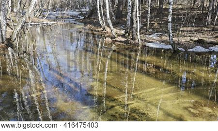 Spring Flood - A Small River Overflowed From Melting Snow In The Forest.