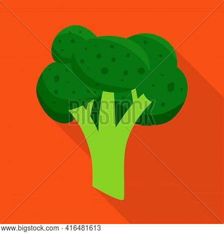 Vector Illustration Of Broccoli And Cabbage Logo. Set Of Broccoli And Doodle Vector Icon For Stock.