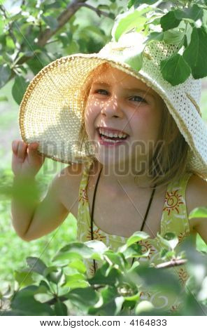 The Girl And Summer
