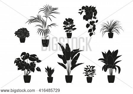 Collection Silhouettes Of Houseplants In Black Color. Potted Plants Isolated On White. Set Green Tro