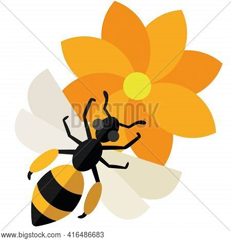 A Bee Collects Nectar From A Flower