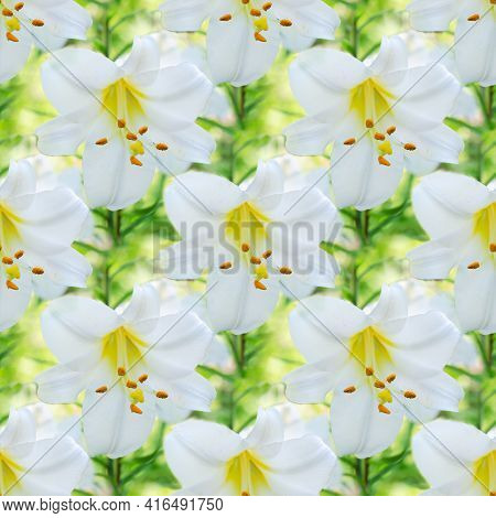 Seamless Unfocused Floral Background With Beautiful White Lilies. Square Framing, Art Design