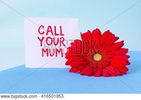 Mothers Daytext Call Your Mum Sticker And Red Gerbera Flower Modern On Minimal Layered Paper Backgro