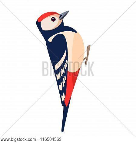 Woodpecker Bird. Flat Cartoon Character Design. Colorful Bird Icon. Vector Illustration Isolated On