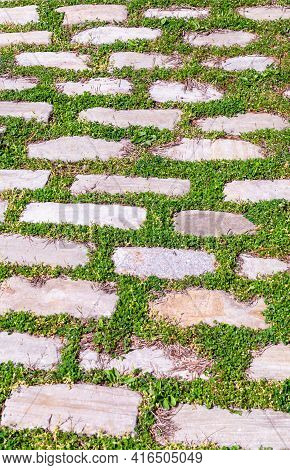 A Stone Belgian Block Walkway With Grass Growing Around The Stones In Pittsburgh, Pennsylvania, Usa
