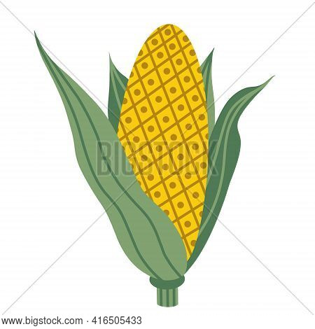 Vector Illustration Of An Ear Of Corn. Yellow Corn In Green Leaves. Isolated Vegetable On A White Ba