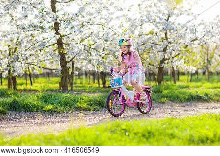Kid On Bike In Blooming Spring Park. Girl Riding Bicycle Under Cherry Blossom Tree On Sunny Day. Hea