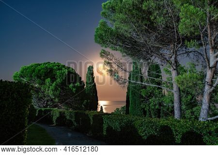 Landscape Of Night Park On Sea Shore With Clear Sky With Red Fool Moon, Dark Tone. Tranquil Park And