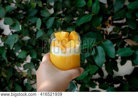 Mango Smoothie Or Mango Yogurt Smoothie With Mango For Serve