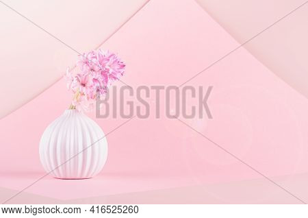 Airy Gentle Romantic Spring Flowers Hyacinth In White Ceramic Vase As Bulb In Sunbeam With Sun Flare