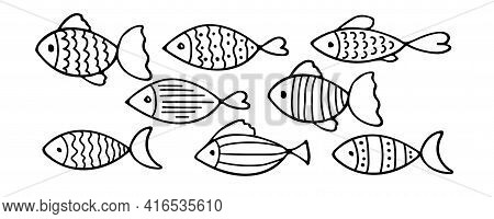 Set Of Vector Stylized Fishes. Collection Of Aquarium Fish. Linear Art. Illustration For Children. S