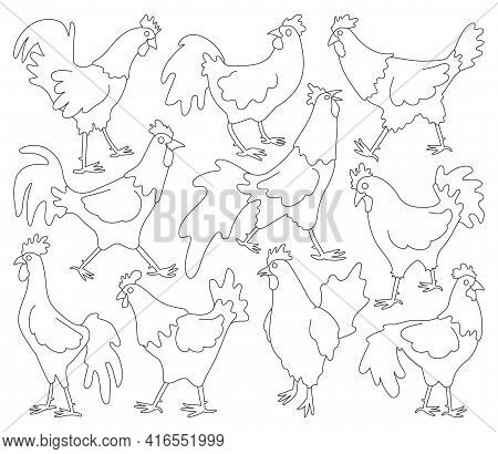 Cock Of Animal Isolated Outline Set Icon.vector Illustration Set Rooster Cockerel.vector Outline Ico