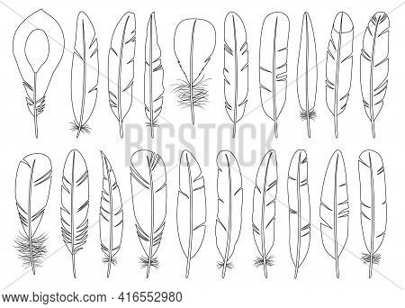 Feather Of Bird Outline Vector Set Illustration Of Icon.feather Pattern Vector Set Of Icon.set Illus
