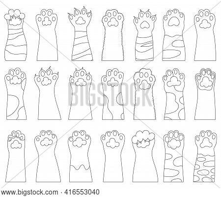 Cat Paw Vector Illustration On White Background. Isolated Outline Set Icon Leg Animal. Vector Outlin