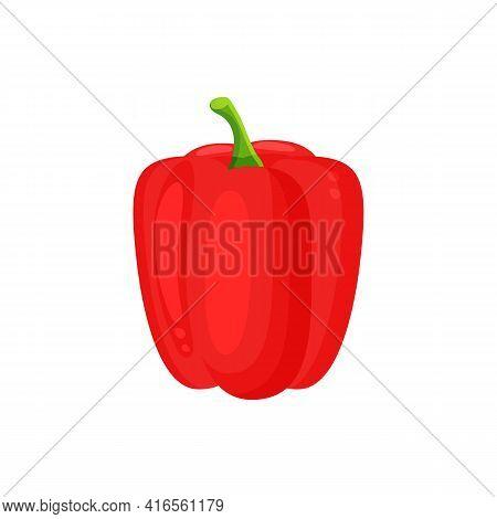 Fresh Red Pepper Vegetable Isolated Icon. Fresh Red Paprika. Pepper For Farm Market, Vegetarian Sala