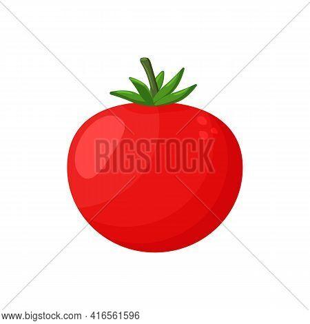 Red Tomato Clip Art Isolated On White Background, Tomatos Cartoon Infographics, Illustration Cartoon