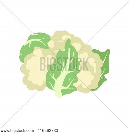Cauliflower Icon. Food For A Healthy Diet. Natural Product Green Vegetable, Suitable For Vegetarians