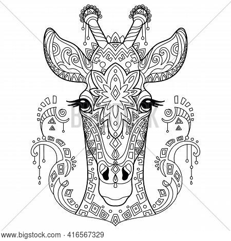 Head Of Giraffe. Abstract Vector Contour Illustration Isolated On White Background. For Adult Anti S