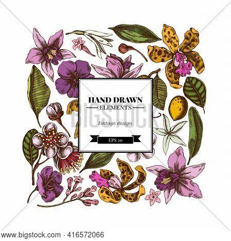 Square Floral Design With Colored Laelia, Feijoa Flowers, Glory Bush, Papilio Torquatus, Cinchona, C