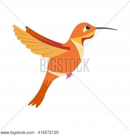 A Bright Colorful Hummingbird, A Bird Painted In Several Colors Orange Red . Vector Illustration Iso