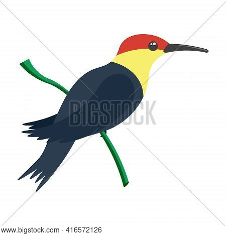 A Bright Multicolored Hummingbird, A Bird Painted In Several Colors Black Yellow Red . Vector Illust
