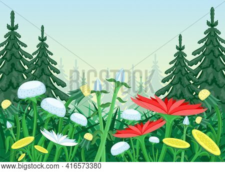 Nature Illustration With Flower Meadow In Coniferous Forest.