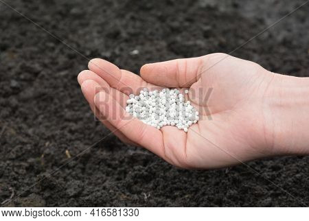 Fertilizing Soil With Mineral Fertilizer In Spring. A Gardener Is Adding Mineral Fertilizer To Reple