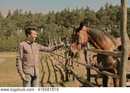 A Man Keeps A Farm, Feeds A Horse And A Donkey With Grass. Man On The Farm, Love For Animals.