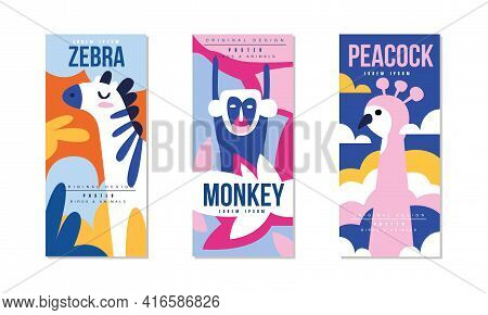 Animals And Birds Colorful Posters Set, Zebra, Monkey, Peacock Banner, Card, Cover, Broshure Templat